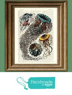 $9.99 The Beautiful Jellyfish of the Ocean illustration upcycled dictionary page book art print from CollageOrama