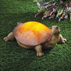 solar turtle light will be a welcome addition to your garden or pathway both day and night. The solar panel converts sunlight to energy to store in the included long-life rechargeable batteries, giving the turtle shell an illuminated amber glow from dusk until dawn. - See more at: http://www.bitsandpieces.com/product/solar_turtle_light/gifts#sthash.RNK4SogJ.dpuf