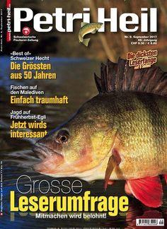 #BestOf Schweizer #Hecht: Die Größten aus 50 Jahren 🐟🇨🇭 Jetzt in #PetriHeil:  #angeln #fishing #Angler #fish #pike