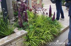 Ogród niby nowoczesny ale... - strona 1093 - Forum ogrodnicze - Ogrodowisko