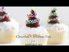 Chocolate Christmas Tree Cupcakes - i am baker