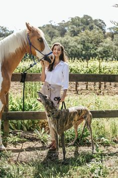 Wine Country Casual: 3 Items To Pack For Your Next Visit To The Vineyards Country Casual, Wine Country, Greyhound Pictures, English Shepherd, Greyhound Art, Equestrian Chic, Dog Lady, Irish Wolfhound, Dog Rules