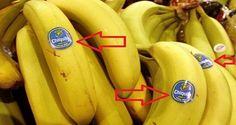 étiquettes des fruits : Lorsqu'on fait ses courses, on est rarement attentif aux codes, symboles date de péremption ou encore des codes chiffre sur certains