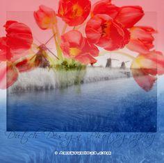 Kinderdijk, the Netherlands - #ikzieikzie flowers and history - artwork € 450,- large High Res digital file - ed. 10 pic.twitter.com/IiFLUbXG9g www.Artstudio23.com