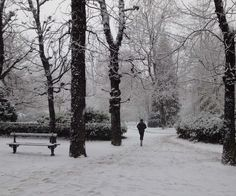 Home-Styling: From Paris - stuck in the snow storm - Maison et Object trip (part II)