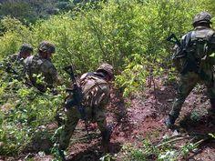 Por la operación militar Génesis, #Colombia es condenada