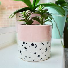 Dalmatian Dotty Handmade Ceramic Plant Pot by Ellart Ceramics, the perfect gift for Explore more unique gifts in our curated marketplace. Painted Plant Pots, Ceramic Plant Pots, Painted Flower Pots, Paint Garden Pots, Keramik Design, Pottery Painting Designs, Decoration Plante, Ceramic Painting, Ceramic Clay