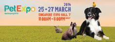 Pet Expo Singapore 2016 – The largest Pet-ducational Fair in Singapore which showcases a myriad of businesses, educational and social activities focused on pets and their well-beings.