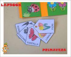 25 Fantastiche Immagini Su Lapbook Primary School Classroom E Lap