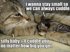 I'll cuddle you, no matter how big you get!
