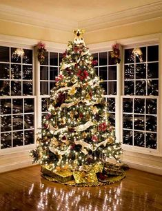 Christmas Tree With Presents And Lights Reflecting In Windows Photography Backdrop J-0261