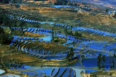 Visit China – the Mysterious Country Rice Field Terraces in Yunnan Countries Around The World, Around The Worlds, Places To Travel, Places To See, China People, China Image, Visit China, Creative Landscape, Largest Countries