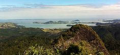 Coromandel Adventures provides a great range of Coromandel tours and adventures that will allow you to see some of the hidden secrets on the Coromandel - things only the locals know about! Castle Rock, Back In Time, Mountain Range, Day Trips, The Locals, Stretching, Faces, Tours, Explore