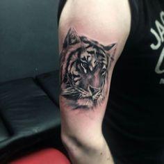 Tiger tattoo Tiger Tattoo, Lion Tattoo, Tattoo Inspiration, Tigers, Lions, Tatting, Tattoo Ideas, Sleeve, Tattoo Animal
