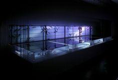 art aquarium exhibition (10)