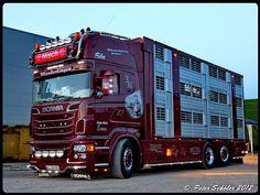 Customised Trucks, Scania V8, New Trucks, Cool Paintings, Volvo, Boat, Vehicles, Coups, Livestock