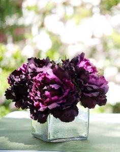 Purple peonies have such a vivid smell--it's no wonder that they're a heart note in Midnight Heat. #beyonceparfums