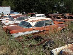 1000 Images About Abandoned 57 Chevy On Pinterest Chevy