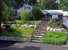 A Shady Sloped Garden In A Plantsmans Garden In Toronto Very - Sloped front yard landscaping ideas