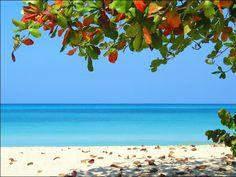 10 Photos That Prove Jamaica Is A Real Paradise #Jamaica, #paradise,