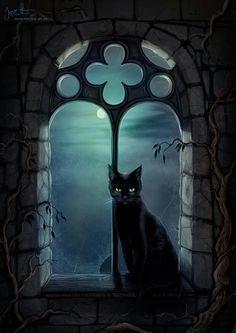Тёмной ночью...