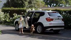 BMW: Vet