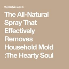 The All-Natural Spray That Effectively Removes Household Mold :The Hearty Soul