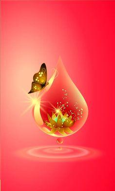 By Artist Unknown. Phone Screen Wallpaper, Heart Wallpaper, Butterfly Wallpaper, Butterfly Art, Love Wallpaper, Cellphone Wallpaper, Nature Wallpaper, Wallpaper Backgrounds, Butterflies