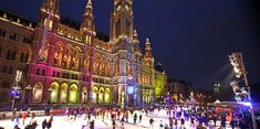 Vienna, Austria ~ A huge skating rink with a dream skating path 600 meters long that leads through a fairytale of illuminations at the City Hall Park. Vienna Winter, Places To See, Places Ive Been, Wonderful Places, Beautiful Places, Skating Rink, Budapest, Town Hall, State Parks