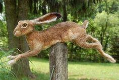 Beautiful life size needle felted rabbit