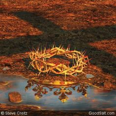 Wow! A king who would leave his thrown to be born in our mess, wear a crown of thorns and die for us.