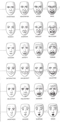 Categories of emotion as defined by facial expressions. It's good knowing this when you have a caricature you're carving. I really enjoy crossing over the lines and mixing two of these together.