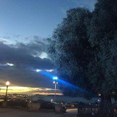 Atardecer sobre la ría al lado del olivo centenario #Sunset #atardecer #vigo