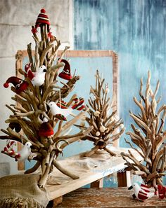 Driftwood Twig Tree for a Coastal Christmas or year round enjoyment.  Enjoy the natural beauty of the twisting driftwood tree branches unadorned or decorate them with your beach christmas ornaments. Each tree is handmade from natural driftwood and will be one-of-a-kind. http://www.seasideinspired.com/3949-driftwood-twig-tree.htm