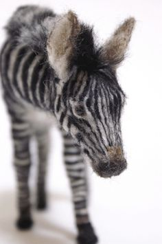 Needle felted Baby Zebra