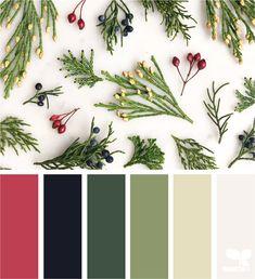 Likes, 17 Comments - Design Seeds® Color Schemes Colour Palettes, Colour Pallette, Color Combos, Christmas Palette, Christmas Colour Schemes, Design Seeds, Pantone, Mandala, World Of Color