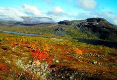 Autumn in Lapland, Finland.