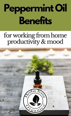 Essential oils like Peppermint can help to support mental clarity,  productivity and alertness. This oil can also help you regain focus  while working from home, or remote schooling. It's great for improving  memory, learning retention, study, focus, and much more. Tap the Image  for more info. #herbaterraorganics #organicoils #peppermintoil Helichrysum Essential Oil, Clary Sage Essential Oil, Lemongrass Essential Oil, Peppermint Essential Oil Benefits, Essential Oils For Memory, Aromatherapy Recipes, Organic Oil, Productivity, Clarity