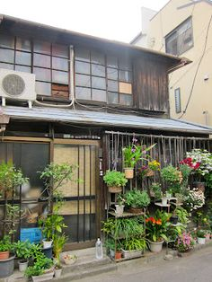 Local Secret: YaNeSen - old house and garden in Tokyo's old Yanaka-Sendagi-Nezu area