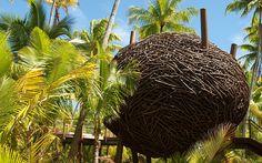 Telegraph: Tahiti: Trip of a Lifetime