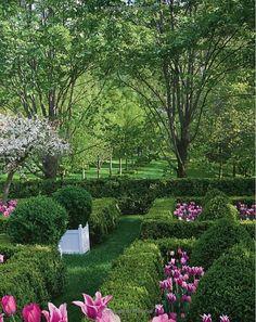 Garden and landscape idea