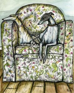 Greyhounds in a chair. Drawing by Elle J. Wilson. #greyhound