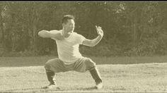 Master Yan Xin - KungFu.Life Shaolin Kung Fu, Chinese Martial Arts, Qigong, Life Pictures, Wing Chun, Jin, Gin
