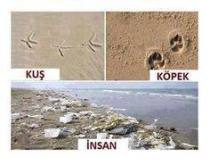 (1) Bilginin Anahtarı® (@BilgininAnahtar) | Twitter sayfasından Medya Tweetleri