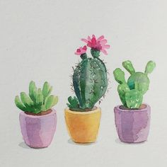 "208 Me gusta, 7 comentarios - Art & Illustration (@leyla_torres_watercolors) en Instagram: ""Cactus. I want to paint dozens of them! Day 24/30 #cbdrawaday #watercolorart #watercolor…"""