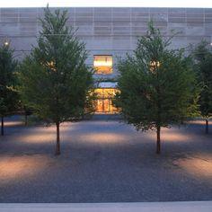 Dallas Museum of Art - Works - Reed Hilderbrand Landscape Lighting, Outdoor Lighting, Dallas Museums, Courtyard Design, External Lighting, Lighting Design, Art Museum, Facade, Restoration