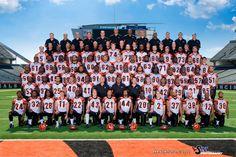 2010 Cincinnati Bengals Team Photo