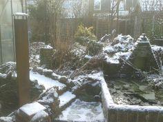 winter tuin nog niet leeg