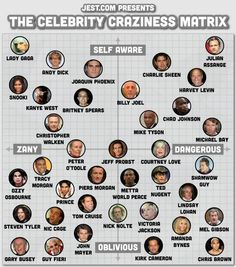 Celebrity Craziness Matrix