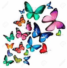 free butterfly wallpaper for kindle fire hd , pink